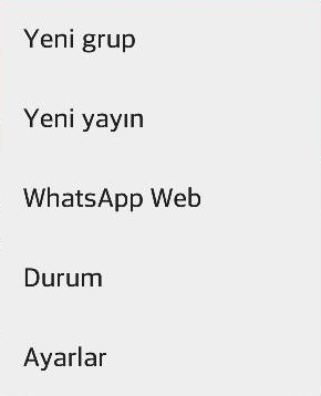 whatsapp-kaldirma