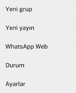 whatsapp-kaldirma