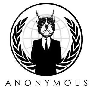 anonymous-cyber-warrior