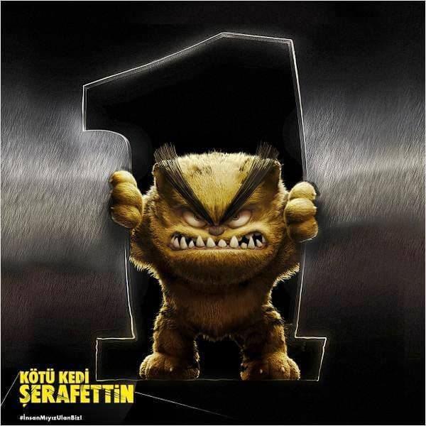 kotu-kedi-serafettin