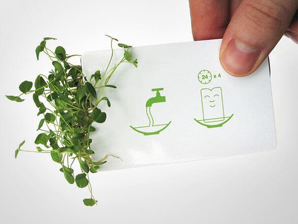 tohum-paketi-kartvizit-pchocasi-2